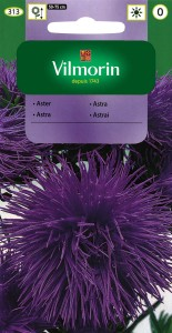 Aster Fioletowy nasiona 0,5g
